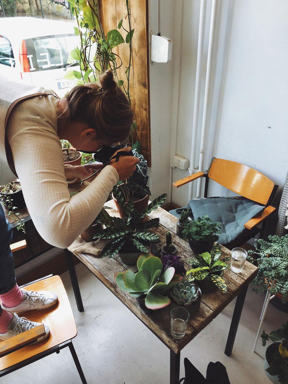 pflanzenbazar-fotoshooting